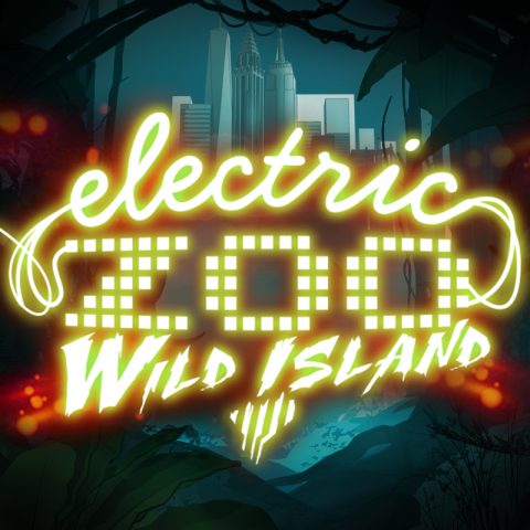 Electric Zoo New York 2-3-4- September 2016